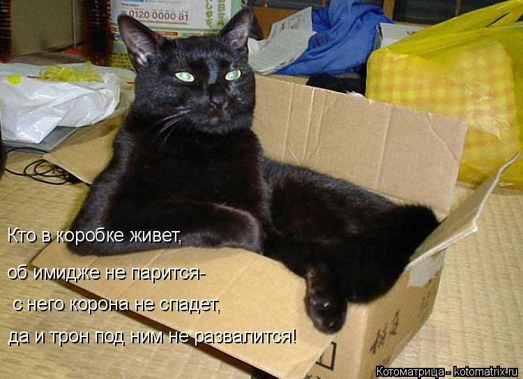 Котоматрица: Кто в коробке живет,  об имидже не парится- с него корона не спадет, да и трон под ним не развалится!