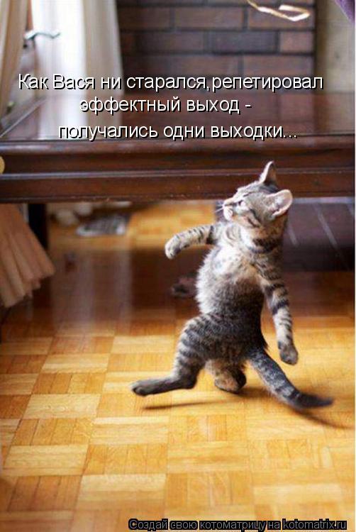 Котоматрица: Как Вася ни старался,репетировал эффектный выход - получались одни выходки...