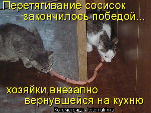Котоматрица: Перетягивание сосисок закончилось победой... хозяйки,внезапно вернувшейся на кухню