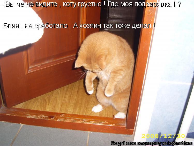 Котоматрица: - Вы че не видите , коту грустно ! Где моя подзарядка ! ? Блин , не сработало . А хозяин так тоже делал !