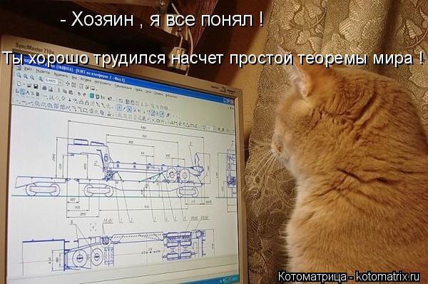 Котоматрица: - Хозяин , я все понял ! Ты хорошо трудился насчет простой теоремы мира !