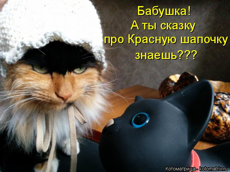 Котоматрица: Бабушка! про Красную шапочку знаешь??? А ты сказку