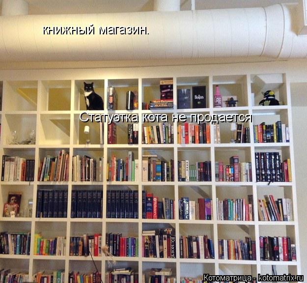 Котоматрица: книжный магазин. Статуэтка кота не продается