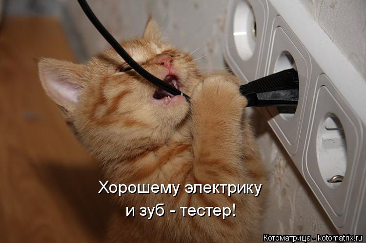 Котоматрица: Хорошему электрику и зуб - тестер!