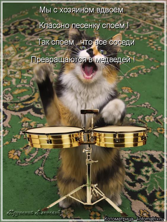 Котоматрица: Мы с хозяином вдвоём  Классно песенку споем ! Так споем , что все соседи   Превращаются в медведей !