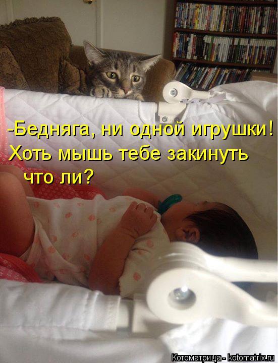 Котоматрица: -Бедняга, ни одной игрушки! Хоть мышь тебе закинуть что ли?
