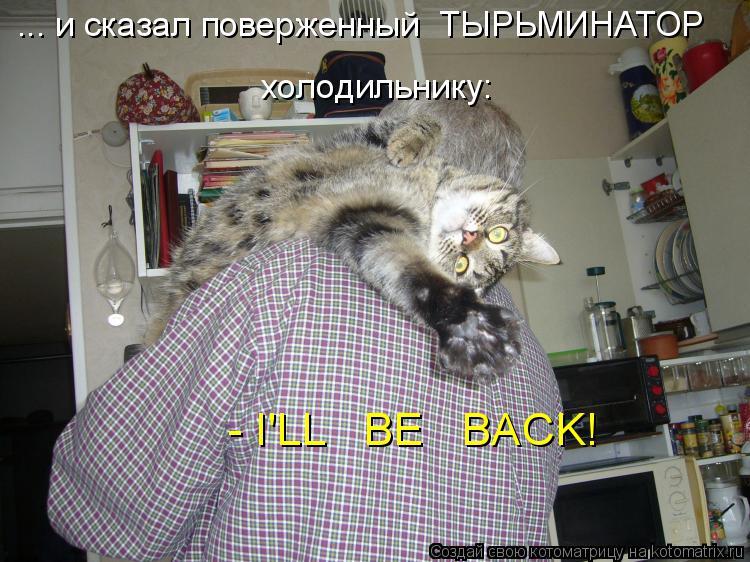 Котоматрица: - I'LL   BE   BACK! ... и сказал поверженный  ТЫРЬМИНАТОР  холодильнику: