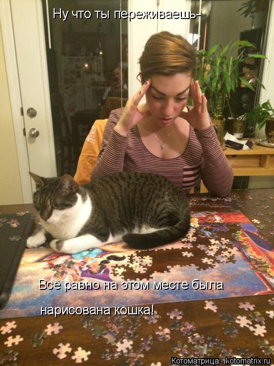 Котоматрица: Ну что ты переживаешь- Всё равно на этом месте была нарисована кошка!