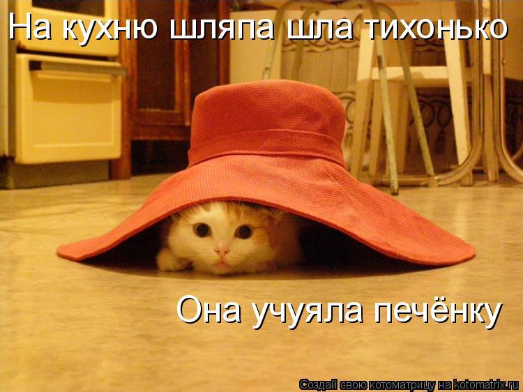 Котоматрица: На кухню шляпа шла тихонько Она учуяла печёнку