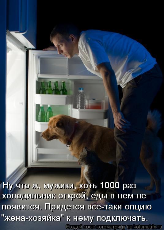 """Котоматрица: Ну что ж, мужики, хоть 1000 раз холодильник открой, еды в нем не  появится. Придется все-таки опцию """"жена-хозяйка"""" к нему подключать."""