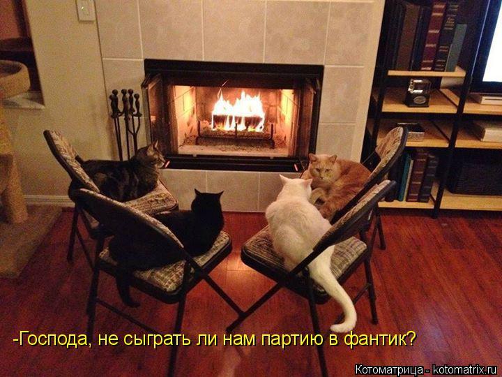 Котоматрица: -Господа, не сыграть ли нам партию в фантик?