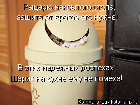 Котоматрица: В этих надежных доспехах,  Рыцарю накрытого стола, зашита от врагов его нужна! Шарик на кухне ему не помеха!