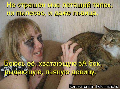 Котоматрица: Не страшен мне летящий тапок,  ни пылесос, и даже львица. рыдающую, пьяную девицу. Боюсь её, хватающую зА бок,