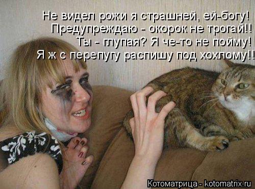 Котоматрица: Не видел рожи я страшней, ей-богу! Предупреждаю - окорок не трогай!! Ты - глупая? Я че-то не пойму! Я ж с перепугу распишу под хохлому!!