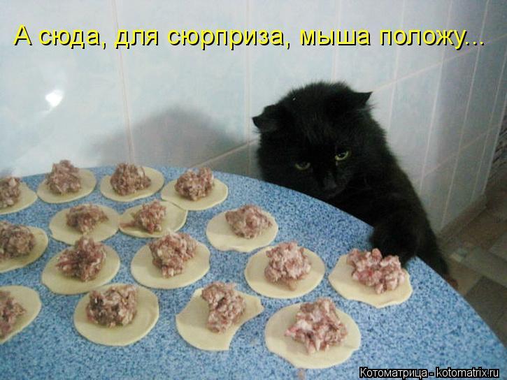Котоматрица: А сюда, для сюрприза, мыша положу...