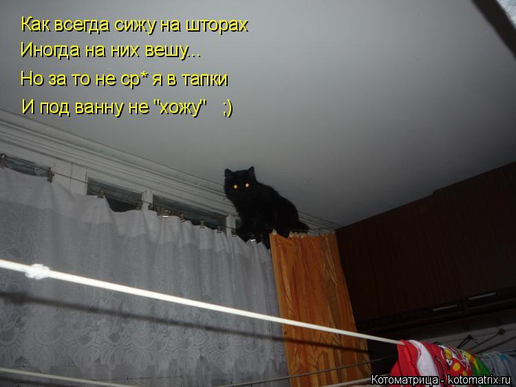 """Котоматрица: Как всегда сижу на шторах Иногда на них вешу... Но за то не ср* я в тапки И под ванну не """"хожу""""   ;)"""