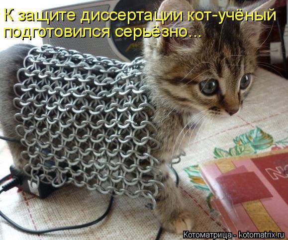Котоматрица: К защите диссертации кот-учёный подготовился серьёзно...