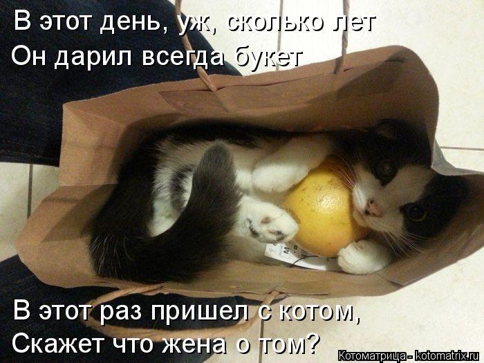 Котоматрица: В этот раз пришел с котом, Скажет что жена о том? В этот день, уж, сколько лет Он дарил всегда букет