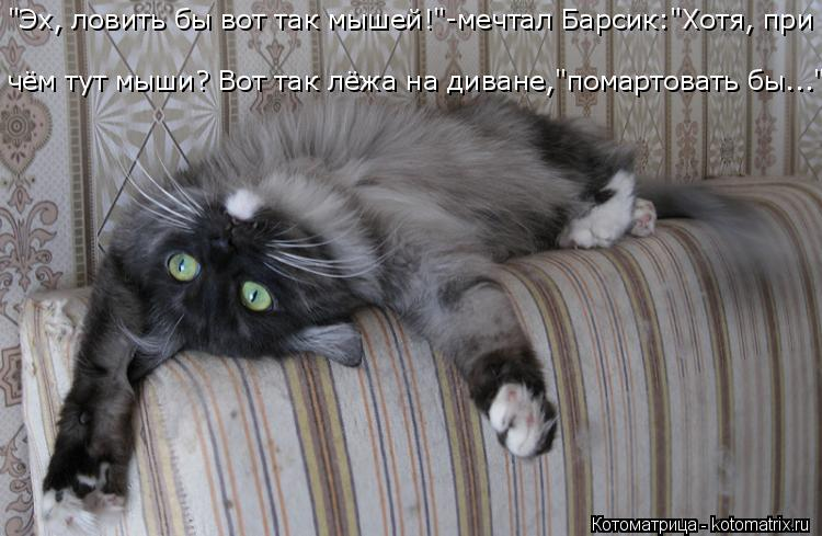 """Котоматрица: """"Эх, ловить бы вот так мышей!""""-мечтал Барсик:""""Хотя, при чём тут мыши? Вот так лёжа на диване,""""помартовать бы..."""""""