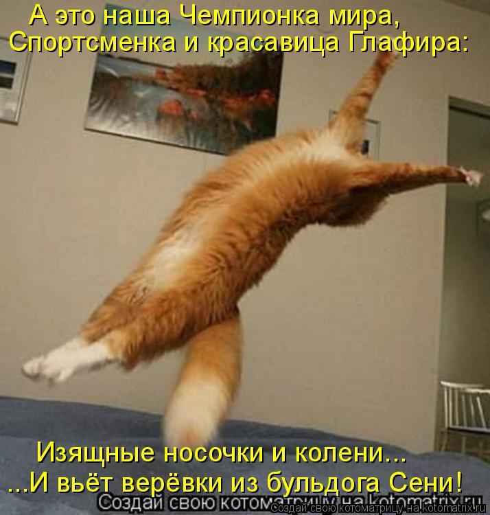 Котоматрица: А это наша Чемпионка мира, Спортсменка и красавица Глафира: Изящные носочки и колени... ...И вьёт верёвки из бульдога Сени!