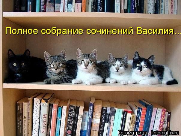 Котоматрица: Полное собрание сочинений Василия...