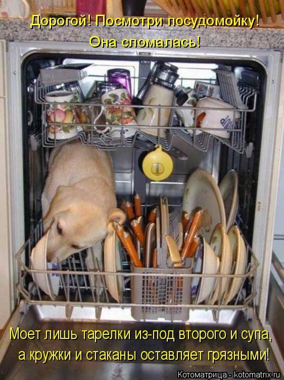 Котоматрица: Дорогой! Посмотри посудомойку! Она сломалась! Моет лишь тарелки из-под второго и супа, а кружки и стаканы оставляет грязными!