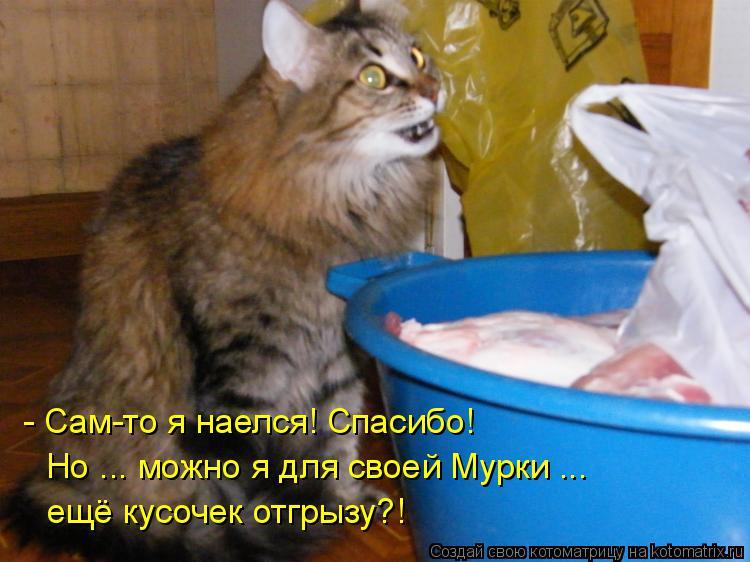 Котоматрица: - Сам-то я наелся! Спасибо! Но ... можно я для своей Мурки ... ещё кусочек отгрызу?!