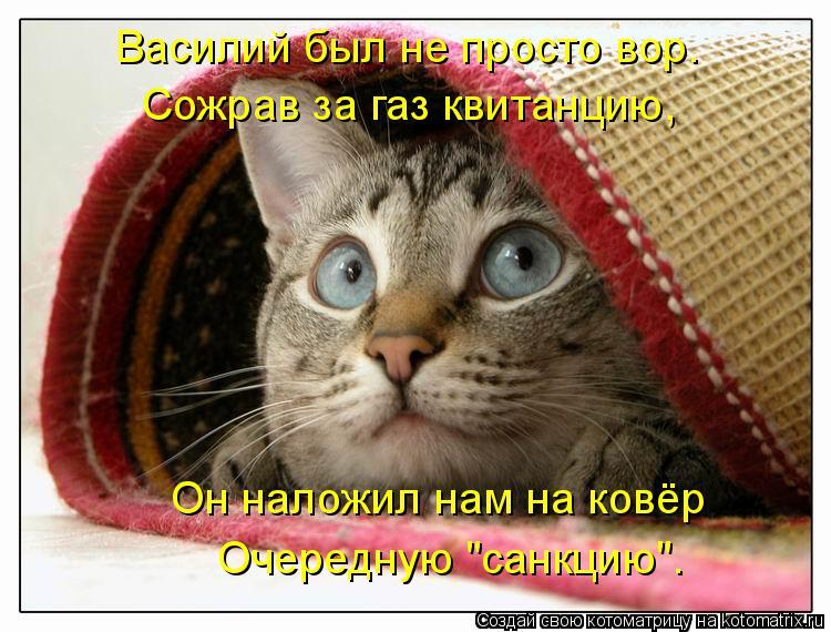 """Котоматрица: Василий был не просто вор. Сожрав за газ квитанцию,  Он наложил нам на ковёр Очередную """"санкцию""""."""