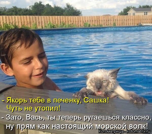 Котоматрица: - Якорь тебе в печенку, Сашка!  Чуть не утопил! - Зато, Вась, ты теперь ругаешься классно, ну прям как настоящий морской волк!