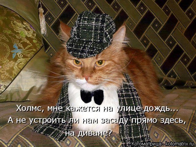 Котоматрица: Холмс, мне кажется на улице дождь... А не устроить ли нам засаду прямо здесь, на диване?