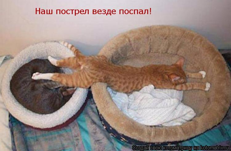Котоматрица: Наш пострел везде поспал!