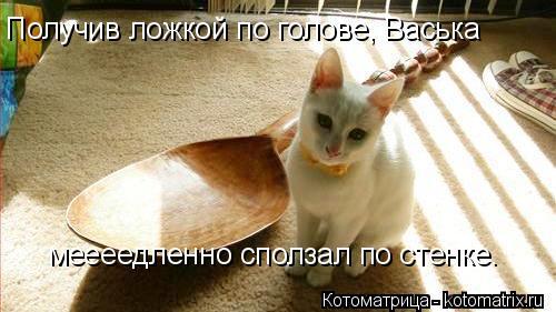 Котоматрица: Получив ложкой по голове, Васька  меееедленно сползал по стенке.