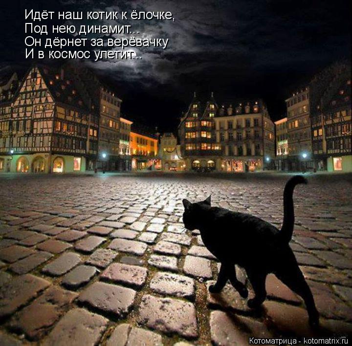 Котоматрица: Идёт наш котик к ёлочке, Под нею динамит... Он дёрнет за верёвачку И в космос улетит...