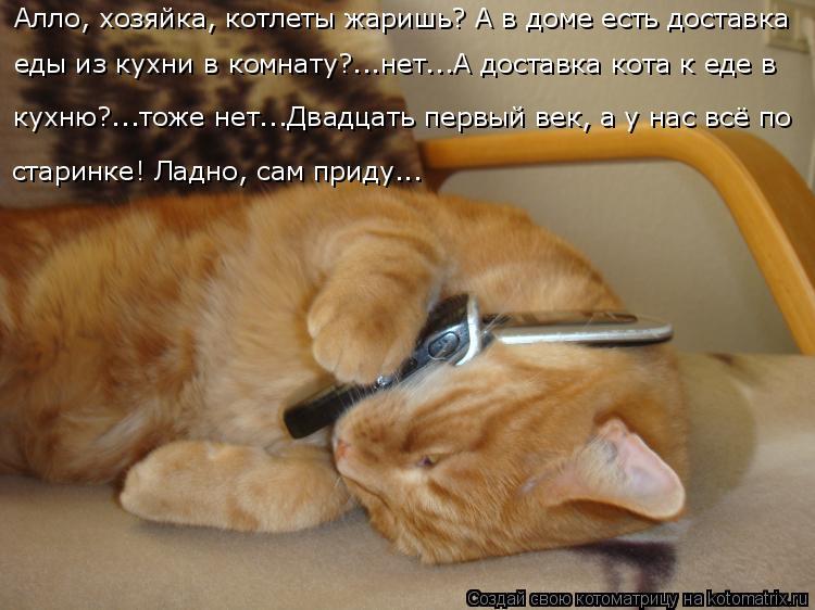 Котоматрица: Алло, хозяйка, котлеты жаришь? А в доме есть доставка  еды из кухни в комнату?...нет...А доставка кота к еде в кухню?...тоже нет...Двадцать первый