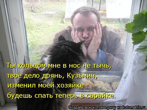 Котоматрица: Ты кольцом мне в нос не тычь, твое дело дрянь, Кузьмич, изменил моей хозяйке -  будешь спать теперь в сарайке.