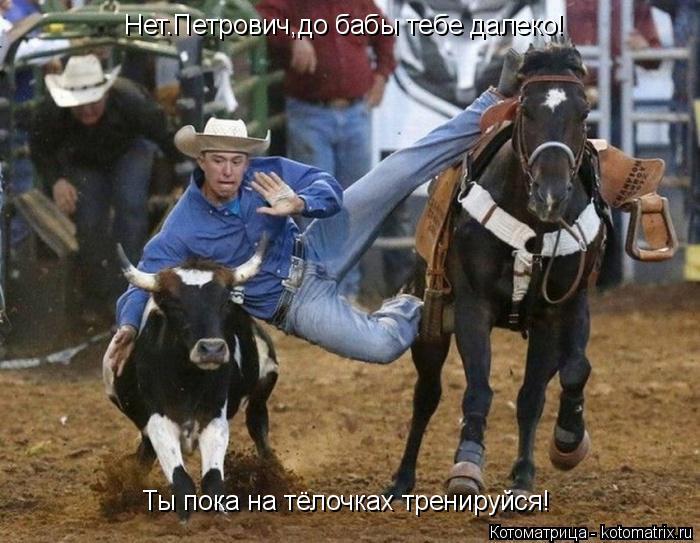 Котоматрица: Нет.Петрович,до бабы тебе далеко! Ты пока на тёлочках тренируйся!