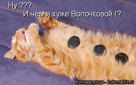 Котоматрица: Ну ??? И чем я хуже Волочковой !?