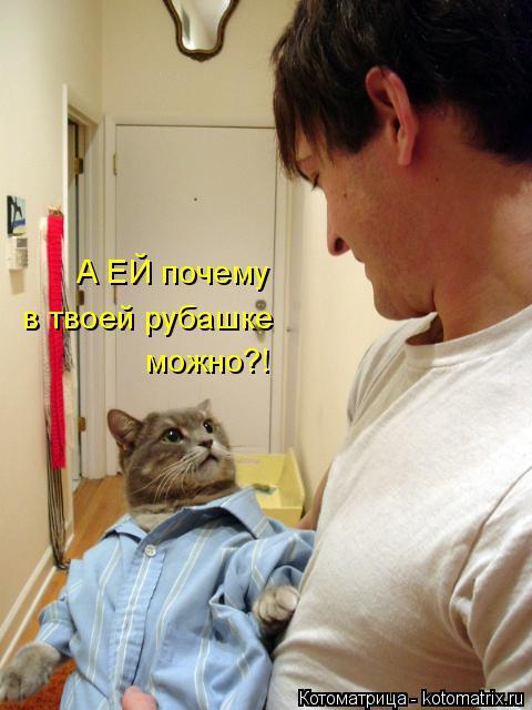 Котоматрица: в твоей рубашке А ЕЙ почему можно?!