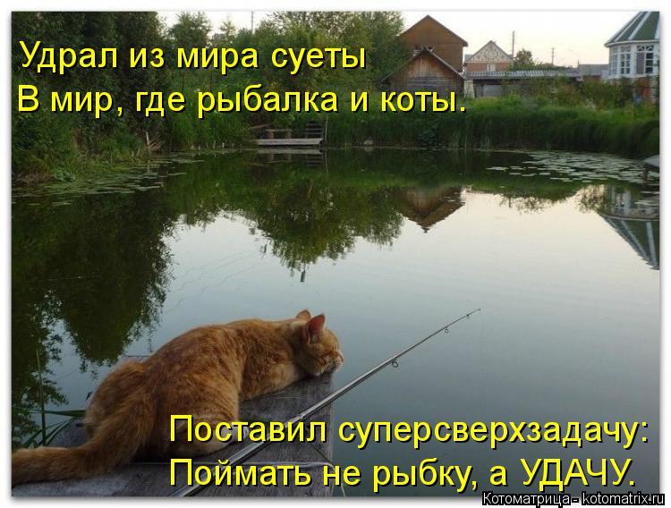 Котоматрица: Удрал из мира суеты В мир, где рыбалка и коты. Поставил суперсверхзадачу: Поймать не рыбку, а УДАЧУ.