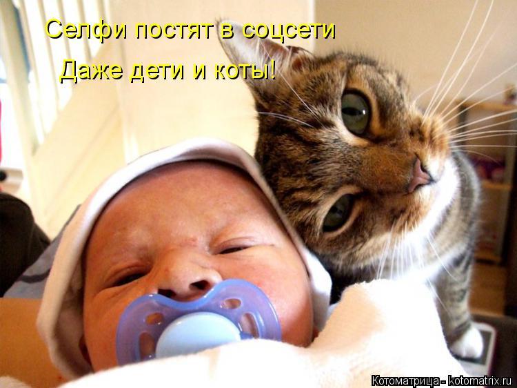 Котоматрица: Селфи постят в соцсети Даже дети и коты!