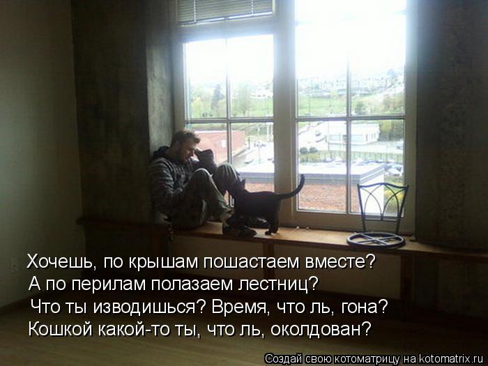 Котоматрица: Хочешь, по крышам пошастаем вместе? А по перилам полазаем лестниц? Что ты изводишься? Время, что ль, гона? Кошкой какой-то ты, что ль, околдова
