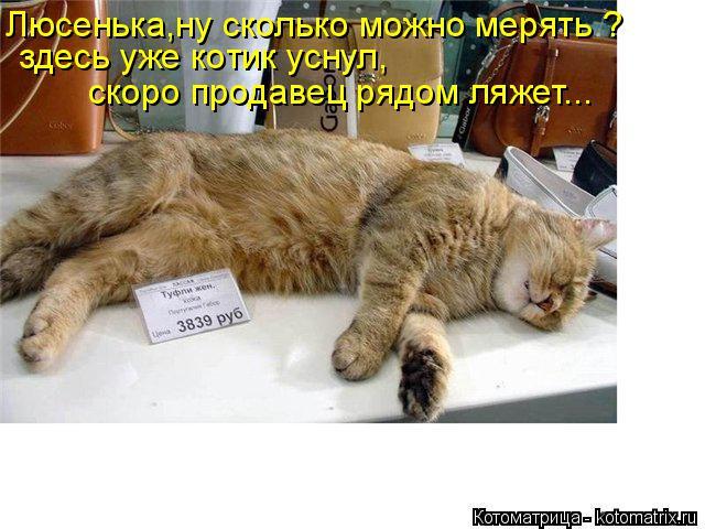 Котоматрица: Люсенька,ну сколько можно мерять ? здесь уже котик уснул,  скоро продавец рядом ляжет...