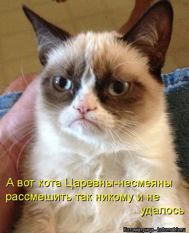 Котоматрица: А вот кота Царевны-несмеяны рассмешить так никому и не удалось