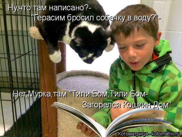 """Котоматрица: Ну,что там написано?- """"Герасим бросил собачку в воду?""""- Нет,Мурка,там """"Тили Бом,Тили Бом- Загорелся Кошкин Дом"""""""