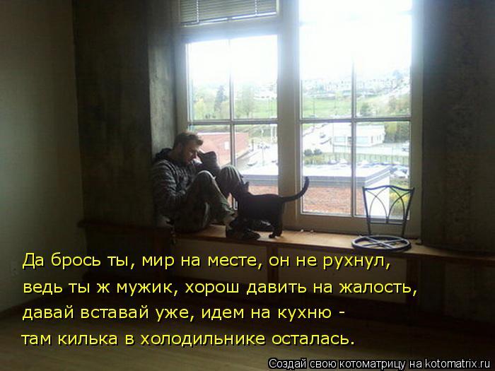 Котоматрица: Да брось ты, мир на месте, он не рухнул, ведь ты ж мужик, хорош давить на жалость, давай вставай уже, идем на кухню -  там килька в холодильнике