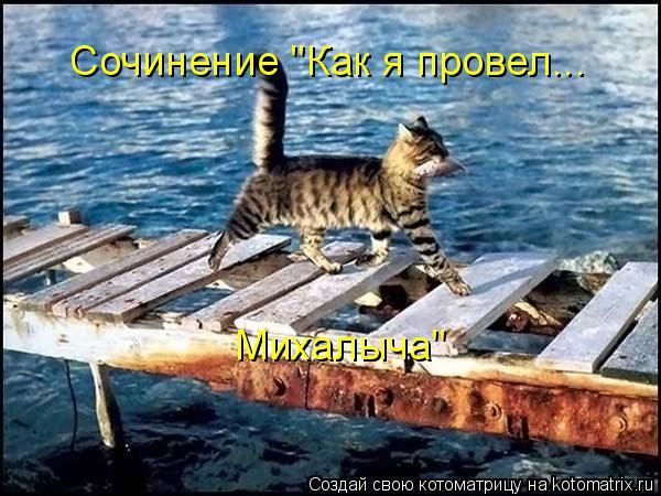 """Котоматрица: Сочинение """"Как я провел... Михалыча"""""""