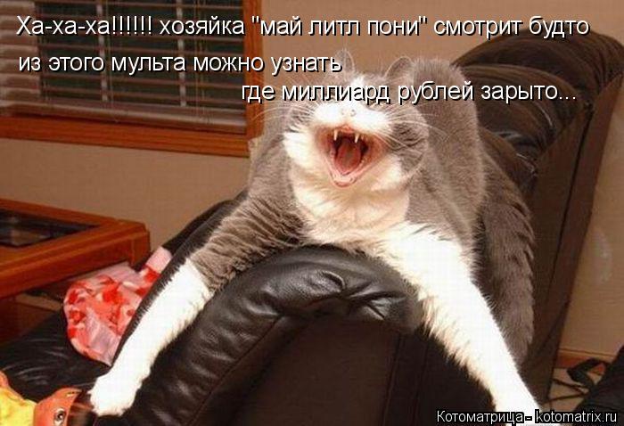 """Котоматрица: Ха-ха-ха!!!!!! хозяйка """"май литл пони"""" смотрит будто из этого мульта можно узнать  где миллиард рублей зарыто..."""