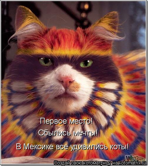 Котоматрица: Первое место! Сбылись мечты! В Мексике все удивились коты!