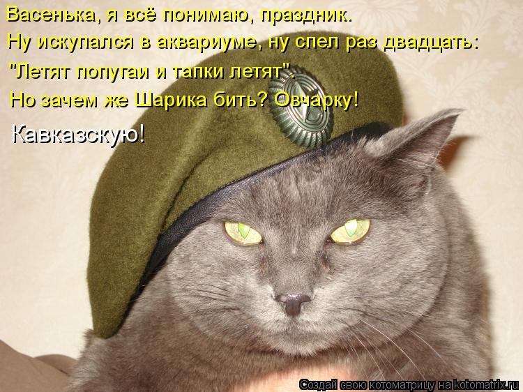 http://kotomatrix.ru/images/lolz/2015/10/15/kotomatritsa_G.jpg