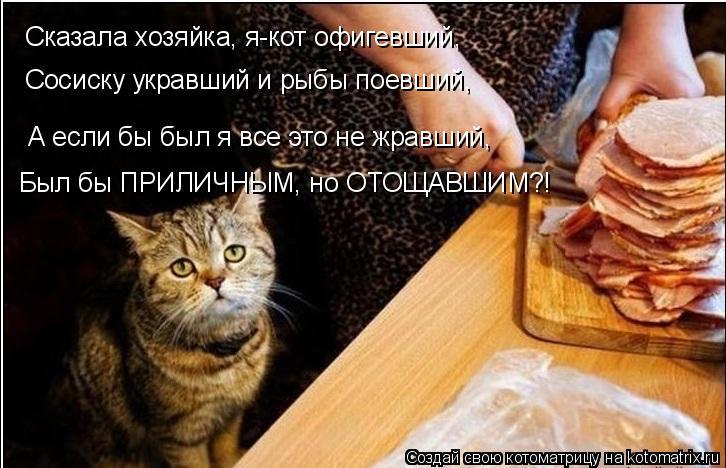 Котоматрица: Сказала хозяйка, я-кот офигевший, Сосиску укравший и рыбы поевший, А если бы был я все это не жравший, Был бы ПРИЛИЧНЫМ, но ОТОЩАВШИМ?!